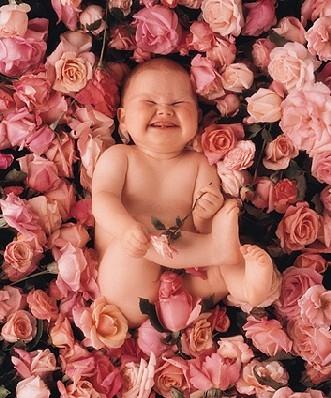 medium_B_E9b_E9s_Roses.jpg