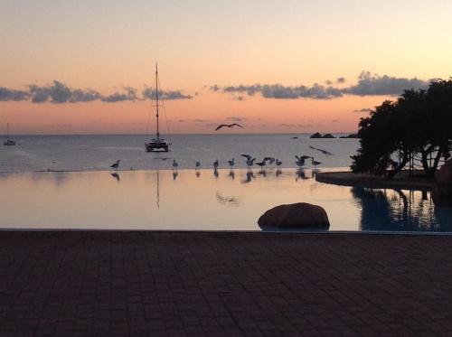 piscine Colonna (2).jpg