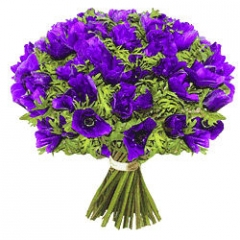violette,bouquet,amour